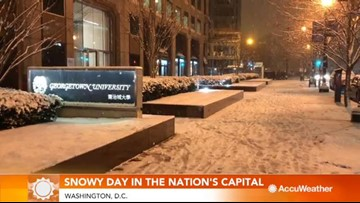 Tourists enjoy snowy day in the nation's capital