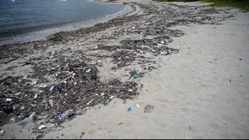 Simple Ways To Reduce Ocean Plastic Pollution