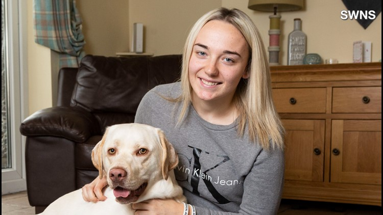 Super Dog Kisses, Paws in to Help Owner When She Suffers Seizures