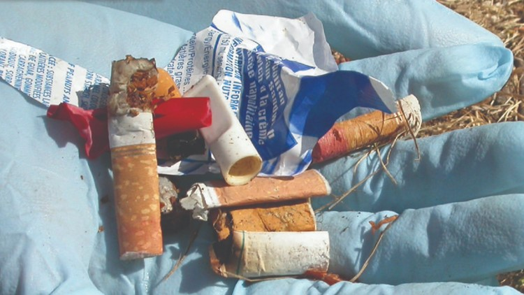 Single-use packaging litter found on Canada's shorelines nearly doubled in 2020