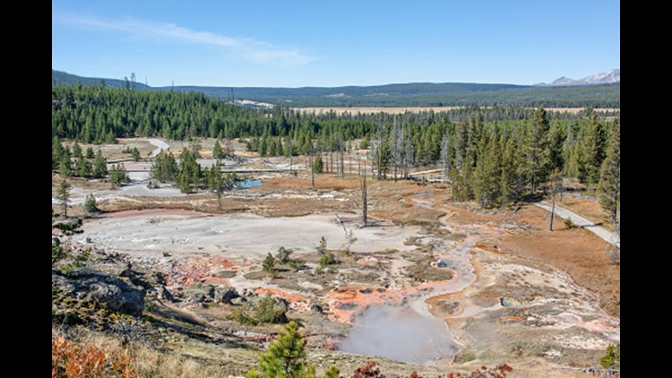 Woman banned from Yellowstone National Park after walking on thermal areas
