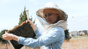Meet the beekeeper who looks after 5 million bees and counting in the Austin area