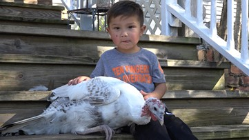 Gobble gobble: Cuddling turkeys helps kids with limb differences