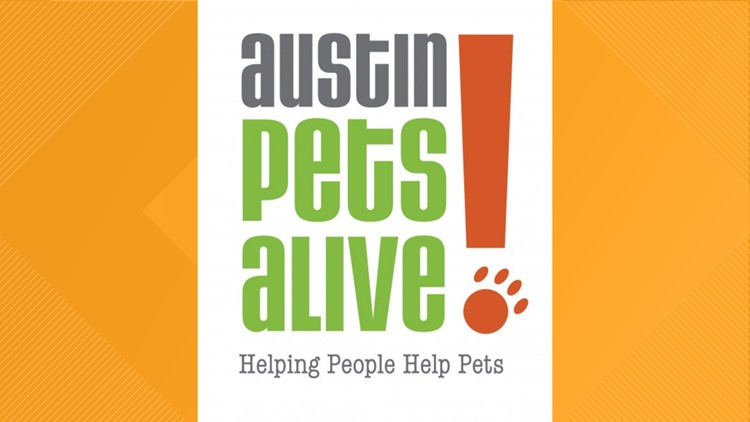 Austin Pets Alive! helps Humane Society of Southeast Texas in wake of Tropical Storm Imelda