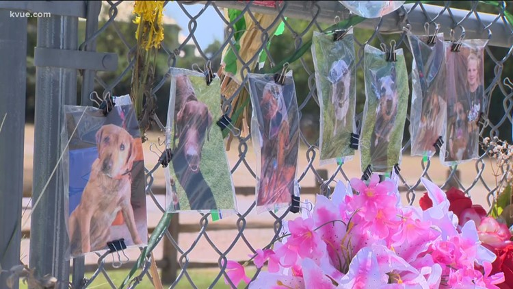 Georgetown residents push for change after Ponderosa Pet Resort fire