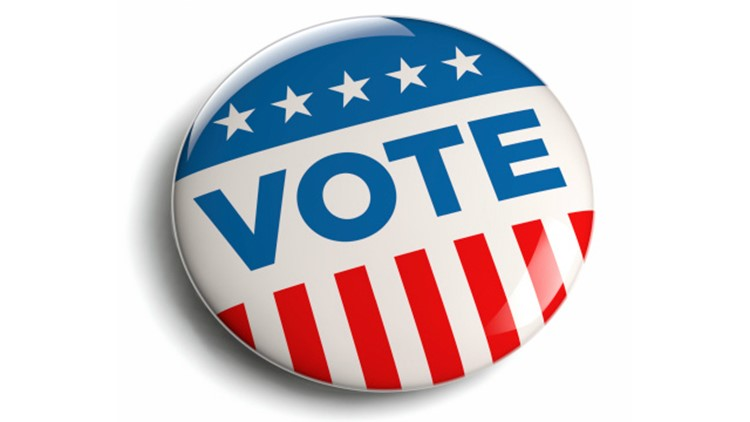 voting election placeholder generic-22023390