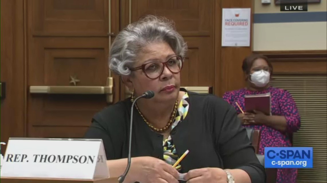 Watch: House Democrats testify for voting rights at US Capitol