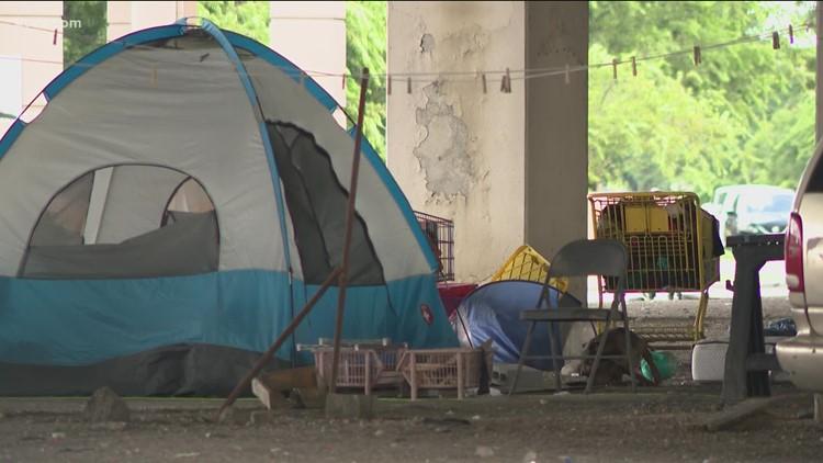 Audit finds City of Austin lacks full list of homelessness efforts