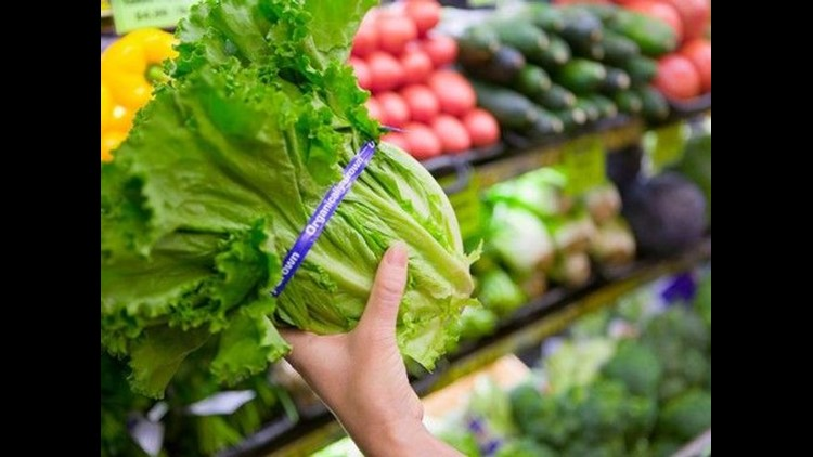 Consumers advised to avoid romaine lettuce after E. coli outbreak