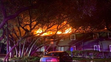 2 killed in South Austin apartment fire Monday morning identified