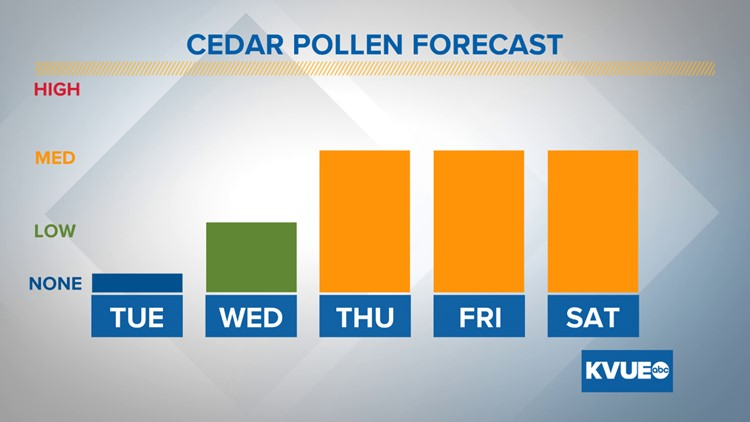Windy weather could spike cedar pollen later this week