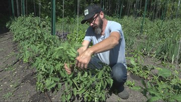 'Why can't we just buy from our neighbors?' Austin company connects local farmers with buyers