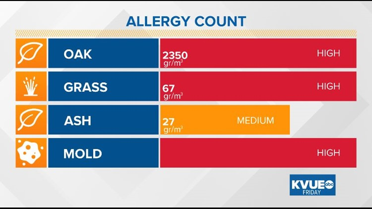 Highest oak pollen count of the season Friday, relief on the way this weekend