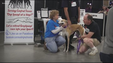 Austin Animal Expo helps strays find a home