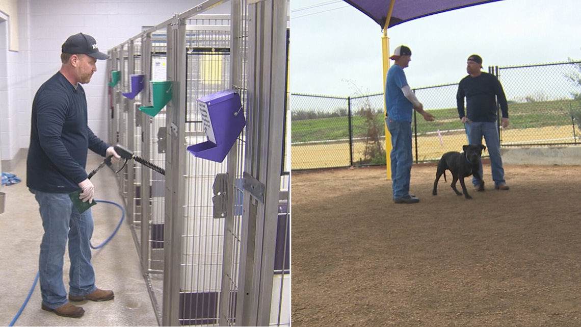 'This is a tough job': The work that goes into the animal shelter in Georgetown