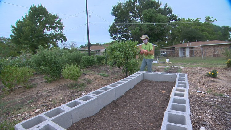 Food Pantry in Lockhart plants garden to help supplement donation supply