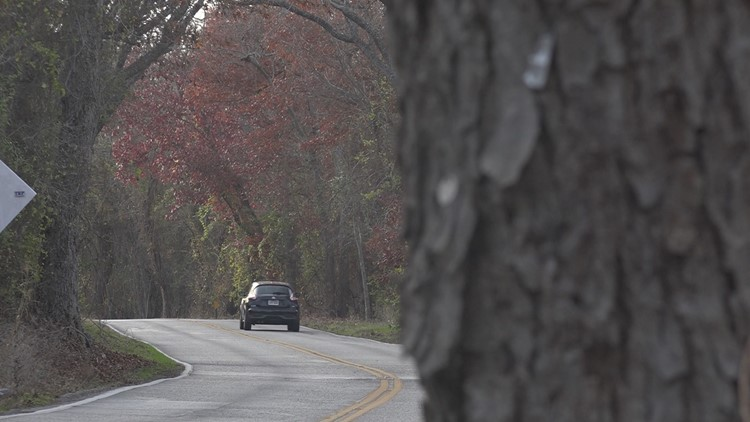Residents band together to stop removal of 104 trees, Williamson County says it's too late