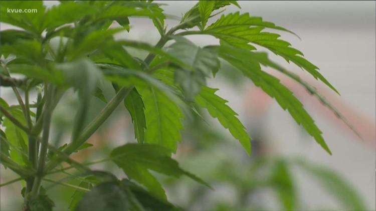 kvue.com - Bob Garcia-Buckalew - Some lawmakers have high hopes, but will the Texas Legislature approve marijuana legalization in 2021?