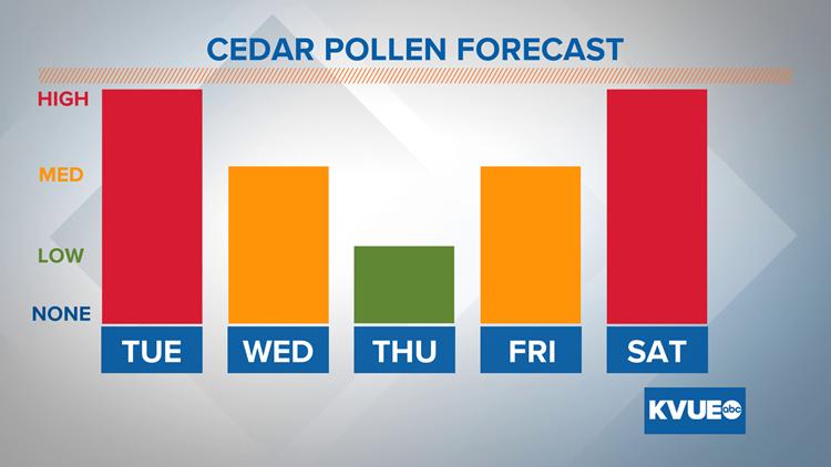 Allergy Alert: Cedar pollen count to stay high through Tuesday