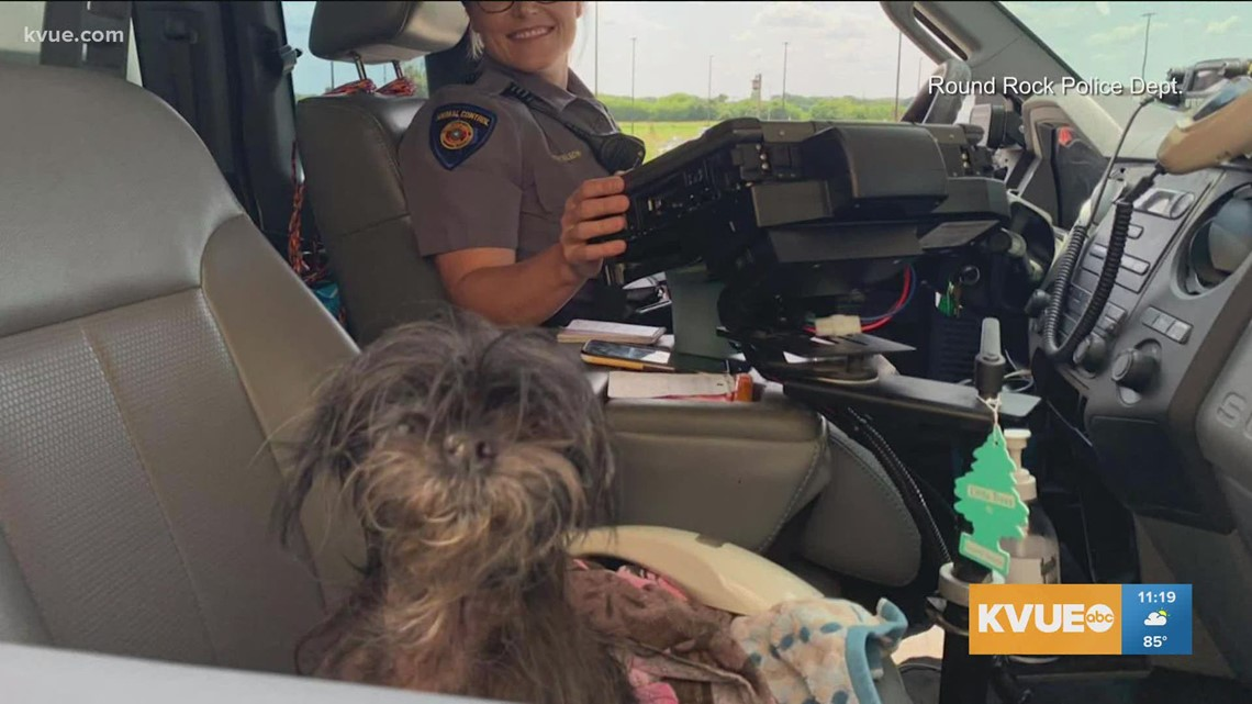 Central Texas family reunited with missing dog after 2 years