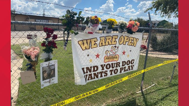 City will not fine Ponderosa Pet Resort for operating without kennel permit
