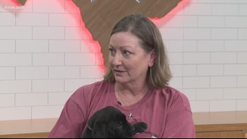 Furry Friend Friday: Puppies who need a home