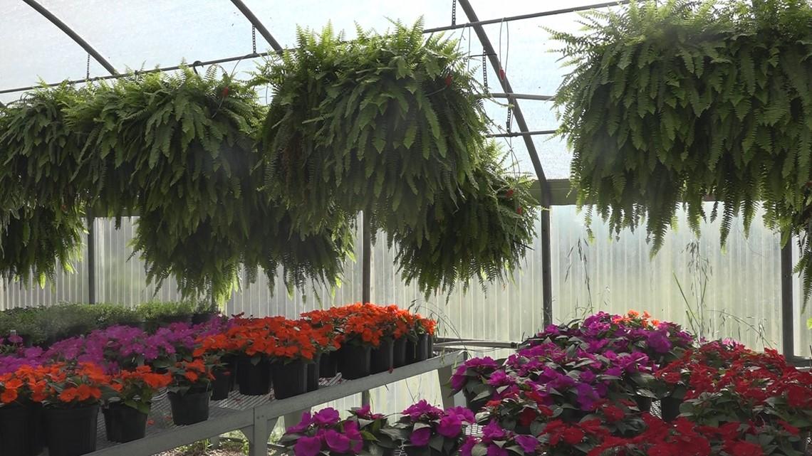 PHOTOS: Horticulture Program At Clifton Career Development