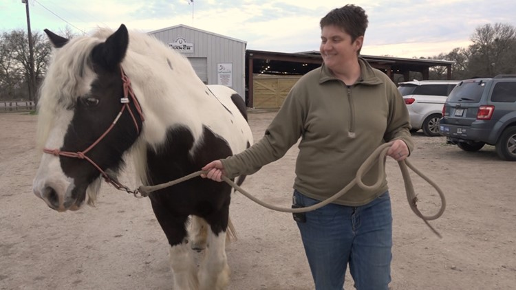 Manor horse ranch offering free 10-week program for veterans