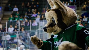 Why Ringo, Texas Stars' mascot, doesn't just focus on the kids