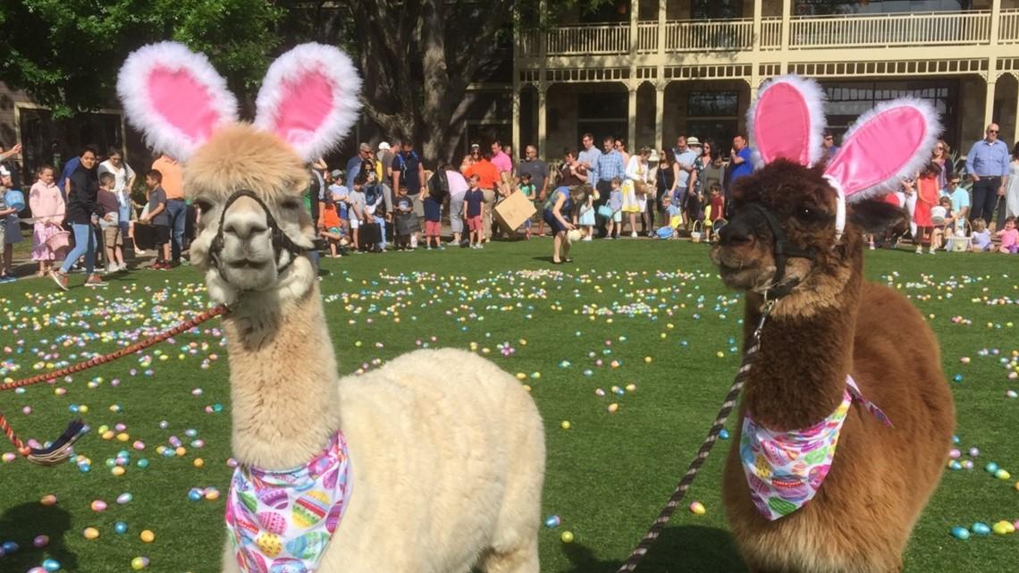 Lost Pines Resort hosts Easter Eggstravaganza