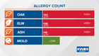 Oak pollen appears for the first time this season around Austin