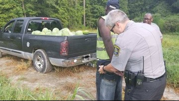 Watermelon thief nabbed after getting stuck in field, say deputies