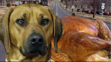 Hungry pup grabs a doggie bag for the road – a whole turkey