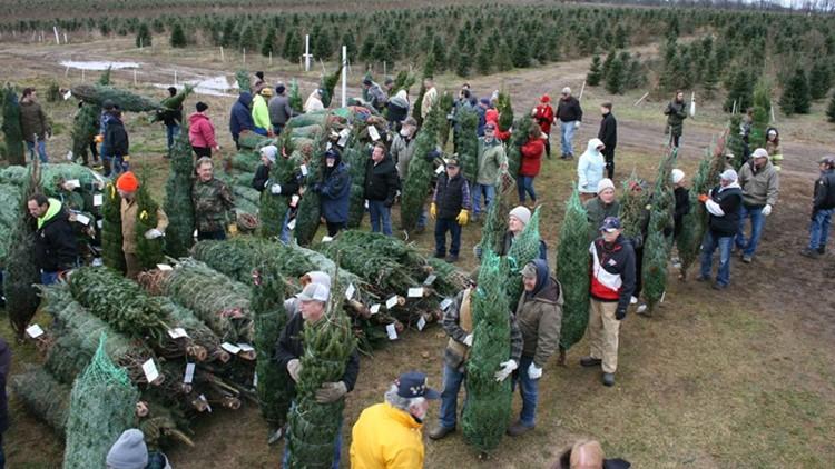 Michigan farm donates 465 Christmas trees to military families
